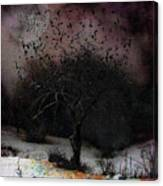 for Sledding and Starlings Canvas Print