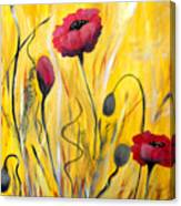For The Love Of Poppies Canvas Print