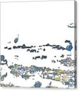 Foraging Gulls Canvas Print
