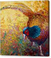 Foraging Pheasant Canvas Print