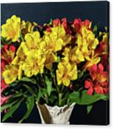 Foral Bouquet Of Red And Yellow Astomelia Canvas Print
