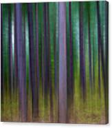 Forest Abstract02 Canvas Print