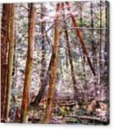 Forest Bling Canvas Print