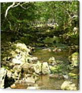 Forest Bridge Canvas Print