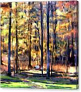 Forest Deck Canvas Print