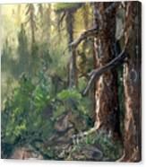 Forest Deep Canvas Print