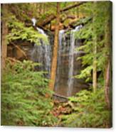 Forest Falls Canvas Print