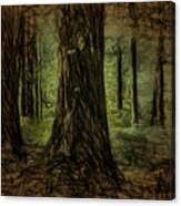 Forest Fantasy Canvas Print