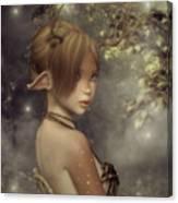 Forest Faun Canvas Print