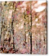 Forest In Autumn Canvas Print