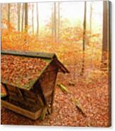 Forest In Autumn With Feed Rack Canvas Print