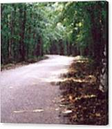 Forest In The Road Wc 2 Canvas Print