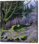 Forest In Wales Canvas Print