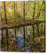 Forest Leaf Reflection Canvas Print