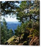 Forest Lookout Canvas Print