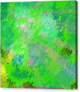 Forest Morning Colors Canvas Print