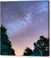 Forest Night Light Canvas Print