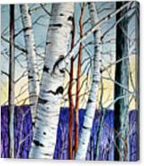 Forest Of Trees Canvas Print