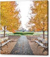 Forest Park Benches Canvas Print