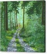 Forest Path 2 Canvas Print