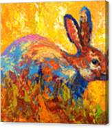Forest Rabbit II Canvas Print