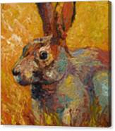 Forest Rabbit IIi Canvas Print