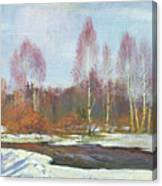 Forest River In Winter Canvas Print