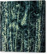 Forest Spirit Canvas Print