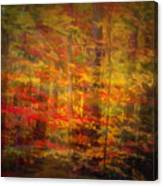 Colorful Forest, Smoky Mountains, Tennessee Canvas Print
