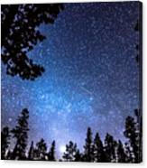 Forest Star Gazing An Astronomy Delight Canvas Print
