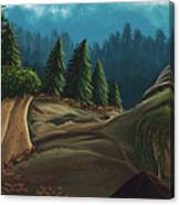 Forest Study Canvas Print