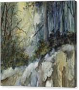 Forest Unknown Canvas Print