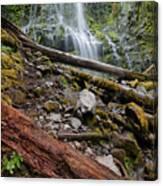 Forest Vibrance Canvas Print