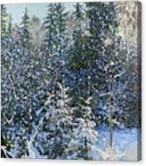 Forest's Fairy-tale. Canvas Print