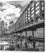 Forever Wild Trail Black And White Canvas Print