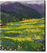 Forgotten Field Canvas Print