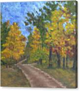 Fork In The Path Canvas Print