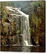 Forth Falls Tasmania Canvas Print