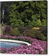 Fountain And Mums Canvas Print