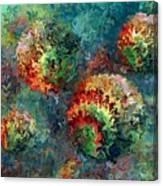 Four Balls Canvas Print