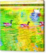 Four Canadian Geese In The Water 1 Canvas Print