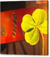 Four Leaf Clover In Studio 1 Canvas Print