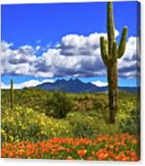 Four Peaks And Poppies, Springtime, Arizona Canvas Print