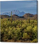 Four Peaks On The Horizon  Canvas Print