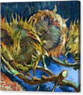Four Sunflowers Gone To Seed, By Vincent Van Gogh, 1887, Kroller Canvas Print