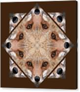 Fox Close Up Canvas Print