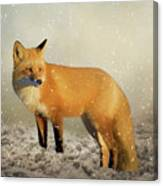 Fox In The Snowstorm - Painting Canvas Print