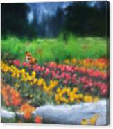 Fox Watching The Tulips Canvas Print