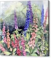Foxgloves Canvas Print