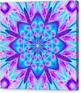 Fractal 13 Canvas Print